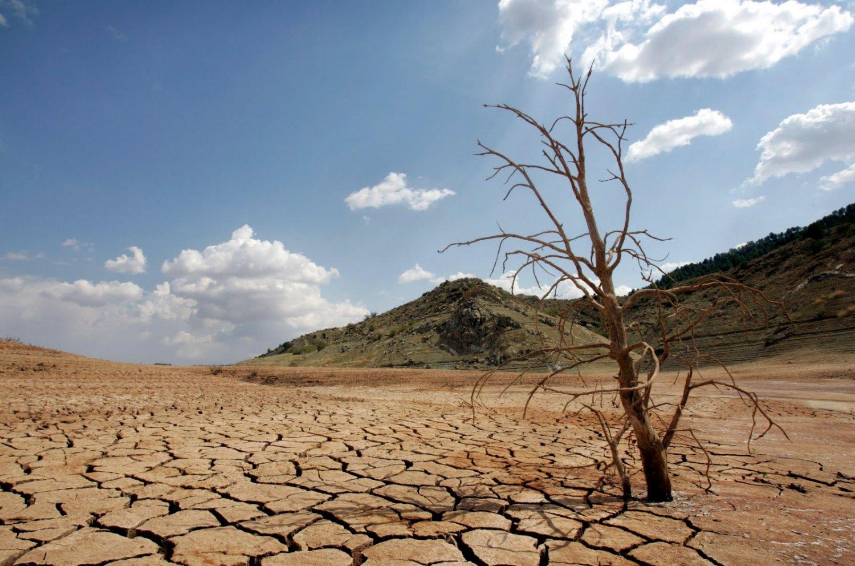 Crisis hídrica: Intereses empresariales y depredación ambiental