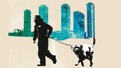 Safari en la pobreza: la ira de los barrios obreros de Gran Bretaña