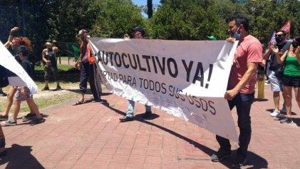 La Plata: organizaciones cannábicas exigen al Gobierno el cese de la persecución a cultivadores
