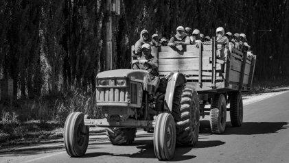 Trabajadores golondrina en Río Negro exigen volver a sus hogares y que se les paguen sus salarios
