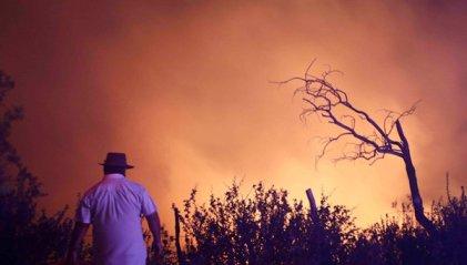 Más de 130 mil hectáreas consumidas por el fuego