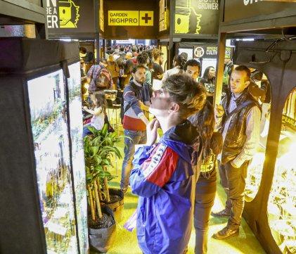 Segunda edición de Expo Cannabis: talleres, conferencias e industria.